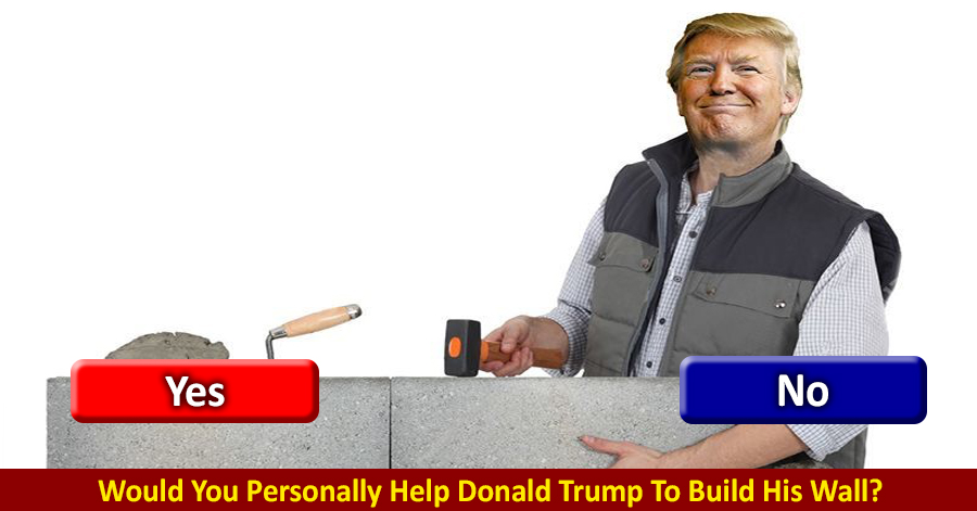 Poll: Would You Personally Help Donald Trump Build His Wall? | enVolve